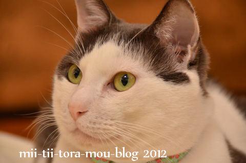 20120304.jpg
