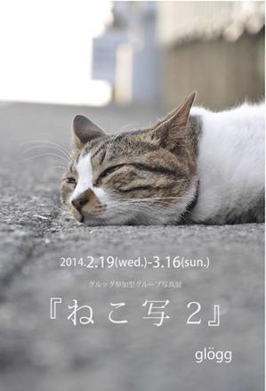 2014グルッグねこ写2_300.jpg