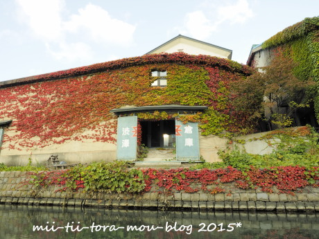 20151010e.jpg