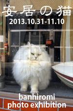 ankyo_DMbanner2013.jpg
