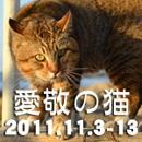2011秋ばんさんバナー.jpg