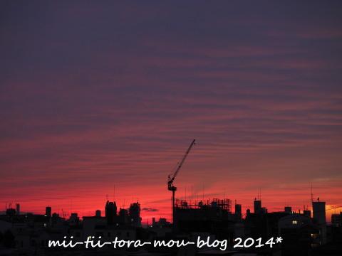 20141010 (2).jpg
