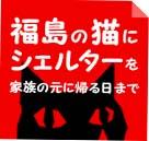 にゃんこはうすバナー.jpg