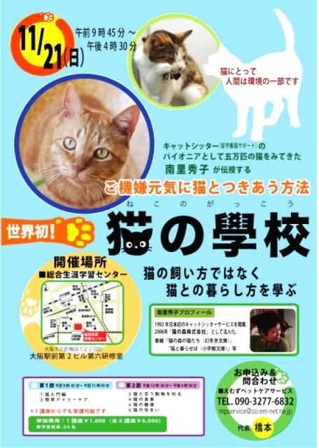 猫の学校.jpg